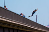 Leap of Faith (Thomas Franta) Tags: 70d action jump basejumping leap eos70d perrinebridge base jumping snakeriver idaho ef100400lii bridge twinfalls unitedstates us