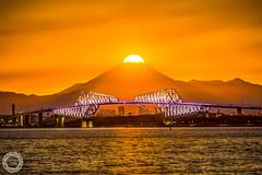 Diamond Fuji with Tokyo Gate Bridge (45tmr) Tags: nightscape night tokyo japan 夜景 東京
