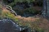 Root and Rock Bridge (stoney021) Tags: northwoods wisconsin apostle islands lake superior lakeshore nature fall autumn seacaves naturalbridge greatlakes