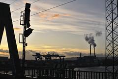 Zollhafen Mainz :: Containerhafen (tmertens0) Tags: zollhafen mainz rhein industrie flus baustelle wohnen innenstadt rheinlandpfalz deutschland europa europe germany harbor industrial city blaue stunde blue hour dämmerung sonnenuntergang sunset dawn herbst fall pentaxm 50 14