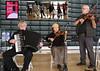 Ellis Island Band and Community Barn Dance (beppesabatini) Tags: elcerritofreefolkfestival folkmusic musicfestivals sanfranciscofolkmusicclub sffmc elcerritohighschool elcerrito california