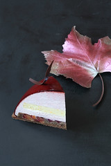 """Bordeaux"" Entremet (Мiuda) Tags: cake cakes dome domecake pastry entremet patisserie patissier autumn chocolate plums plum mousse layered contemporary dark darkphoto stilllife delicious dessert sweet sugar food baking icecream gelatin canon foodphotography foodphoto foodblogger blogger blog foodblog grape leaf decoration maple leaves nature natural french frenchpastry modern moussecake bake baked bakery"
