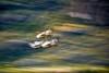 La bandada - Reserva Nacional Cerro Castillo (Patagonia - Chile) (Noelegroj (Happy New Year!)) Tags: chile patagonia landscape paisaje nature naturaleza scenicbeauty paquenacional nationalpark reservanacional cerrocastillo aysen carreteraaustral verano aisen bandada flock aves movementeffect efectodemovimiento grass pastos pradera praire