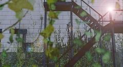 Take the stairs, they say (g a b r i e l l e s w i n d l e h u r s t) Tags: elysion sl asylum grimescentral unkindess totaldestruction