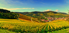 Fall Panorama (DrQ_Emilian) Tags: fall autumn color light season hills travel destination town rural beautifull october stetten remstal kernen germany badenwürtemberg europe wanderlust nikon outdoors day sunny sunlight vineyards 2017