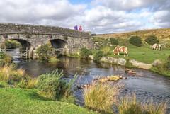 The Cherry Brook, Dartmoor (Baz Richardson (trying to catch up again)) Tags: devon dartmoor cherrybrook bridges brooks ponies lowercherrybrookbridge gradeiilistedbridges dartmoorponies