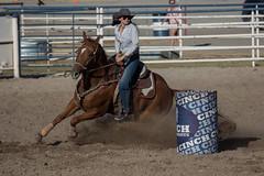 GY8A5106.jpg (BP3811) Tags: 8seconds 2017 allen arizona bareback barrel bell belt bit boots boy breakaway bronc buck buckle bull bulldogger bustin busting calf chase clown corral cow cowboys cowgirl days fall gate hat hazer header healer helmet horns horse jump kids lariat leap mutton october queen racing reins rex riders riding rodeo rope roping run saddle sheep spurs steer team teamwork tie twist wilcox wrestling