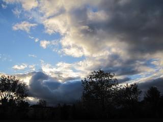 Giant bird cloud