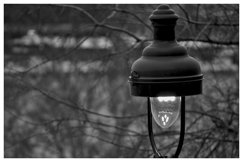 A little light shade gives dark some meaning;