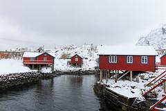 IMG_2607 (alessandro orfanù) Tags: norway lofoten vesteralen hurtigruten winter snow northernlight