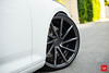 Audi A4 - CVT - Gloss Graphite - © Vossen Wheels 2017 1017 (VossenWheels) Tags: a4 a4aftermarketwheels a4wheels audi audia4 audia4aftermarketwheels audia4wheels audiaftermarketwheels audirs4 audirs4aftermarketwheels audirs4wheels audis4aftermarkrwheels audis4wheels audiwheels audis4 cvt glossgrpahite rs4 rs4aftermarketwheels rs4wheels s4aftermarketwheels s4wheels vossen vossenwheels s4 ©vossenwheels2017