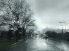 life is a road . . . (YvonneRaulston) Tags: surreal atmospheric art australia creativeartphotography cold clouds dream rain raindrops mist fog car headlights lights tree trees road street emotive soft shower moody moments iphone nsw wet grey slow shutter multiple exposure