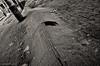 Wave (gregador) Tags: cleveland ohio decayed abandoned industry urbex urbanexploring urbanexploration blackandwhite monochrome woodflooring