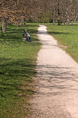 Long Path In The Park (k009034) Tags: 500px park trees people nature travel old path dog grass man time long crow leading lines springtime europe tallinn estonia tranquil scene copy space kadriorg destinations baltic countries teamcanon