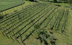 Tiger Claw Hops Farm-0065 (TheMOX) Tags: indiana unitedstates us spark dji quadcopter drone hops farm