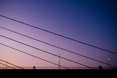 city.bridge.and.cyclist (grizzleur) Tags: scale street color minimal minimalistic bridge lines colors gradiend pink blue silhouette silhouettes bike biker cyclist bicycle streetphotography soft bluehour night nightshot nightcitylights nightcolors urban city space fujilove fujifilm fuji xt20 fujixt20 xf23mm 23mm 35mm lamp artificiallight
