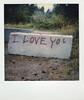 I LOVE YOU (bowerbirdnest) Tags: polaroid polaroidoriginals instantfilm instant sx70 sx70sonar film filmisnotdead seattlewashington seattle mountrainier rainier olympicnationalforest pikeplacemarket