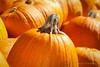 Closeup! (K.Yemenjian Photography) Tags: beautyofnature closeup macro depthoffield details detailed fruits fruit vegetable october oktoberfest halloween pumpkin pumpkins canont5i canon