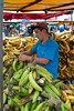 Costa-Rica-5719.jpg (ingmar_) Tags: costarica cultuur gezin vakantie zomervakantie