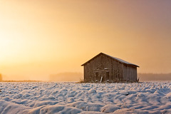 Old Barn House In The Winter Sunrise (k009034) Tags: 500px mist sky sunrise morning forest winter nature travel old building snow fields woods barn wooden no people coldness nordic countries support house finland tranquil scene scandinavia copy space oulainen matkaniva destinations teamcanon