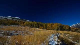 Fall Colors in the Eastern Sierra's