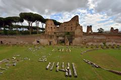 Hippodrome of Domitian, Rome, Italy  -  (Selected by GETTY IMAGES) (DESPITE STRAIGHT LINES) Tags: nikon d7200 nikond7200 nikkor1024mm nikon1024mm getty gettyimages gettyimagesesp despitestraightlinesatgettyimages paulwilliams paulwilliamsatgettyimages rome roma romeitaly colosseum thepantheon thecolosseumrome thecolosseuminrome architecture flavianamphitheatre amphitheatre colosseo italy gladiator gladiators vespasian titus emperor palatinehill collispalatium palatinehillrome ortifarnesianisulpalatino cardinalalessandrofarnese