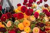 Dahlie  (14) (berndtolksdorf1) Tags: blumen flowers dahlien pflanzen plants rot gelb blüten blossoms