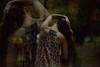 Reflected (NoelleBuske) Tags: nikon autumn fall back dress pose hair long noellebuske noellebuskephotography longhair double outdoor overlay