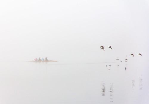 Foncer dans le brouillard