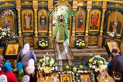 Преподобного Сергия (53)