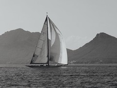 Regates royales 2017 (plb06) Tags: france cannes regatesroyales sailboats