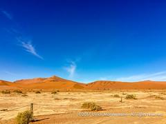 Transfer ride to the Deadvlei, Namib-Naukluft-park, Namibia (Ulrich Münstermann) Tags: africa afrika dünen landschaft namibnaukluftpark namibia sossusvlei transportation wüste desert dry dunes landscape landschap sand transfer transport hardapregion