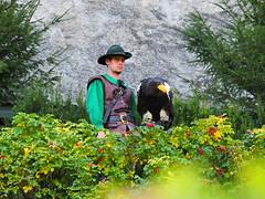 PA114392 (RiverboyChen) Tags: 國外旅遊 歐洲 奧地利 維爾芬 鷹堡 hohenwerfencastle