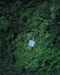 Vietnam - Flying over the beautiful Cat Ba Island (camilleboldt) Tags: blogger mountain nationalpark nature dronification dronelandscape deonephotography drone vietnamlandscape landscape halongbay catba catbaisland vietnam