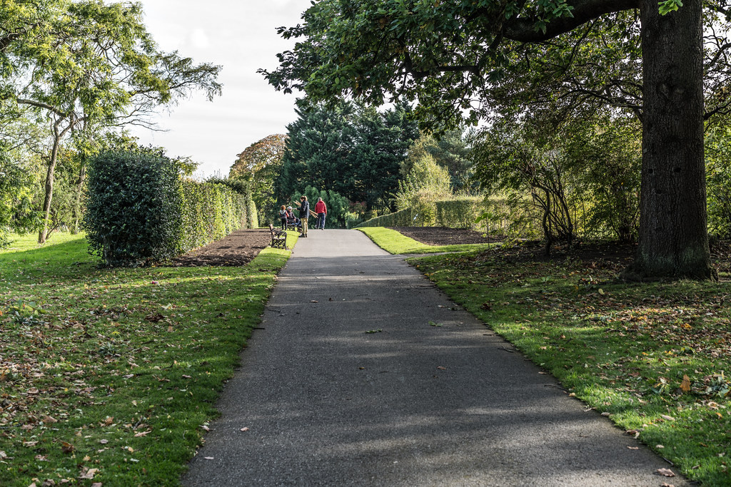 A VISIT TO THE BOTANIC GARDENS ON THE DAY AFTER AFTER STORM OPHELIA [MINIMAL STORM DAMAGE]-133317