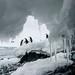 Behind the scene - Antarctica - benjaminmorel.photo