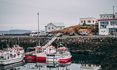 DSC_0695 (claudiacolby) Tags: iceland westfjords northwesticeland travel landscape sunset sky mountain volcano waterfall stykkisholmur harbour oldharbour port traditional landscapephotography nikon 35mm