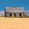 first settler (Sky Noir) Tags: bancroft idaho unitedstates us abandoned decay farm house field wheat
