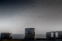 Le torri (Silver_63) Tags: portovenere la spezia mare oceano
