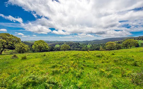 Lot 147 Redlands Road, Hernani, Dorrigo NSW
