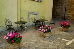 Urbino 37 (Krasivaya Liza) Tags: urbino italy italia europe european summer 2017 town village medieval stone walls fortress charming quaint cathedral ancient historic historical architecture