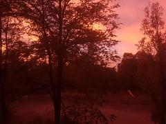 Colors of the sunset (matteov.) Tags: pavia tramonti tramontipavesi tramonto attheendoftheday sunset autumn autunno