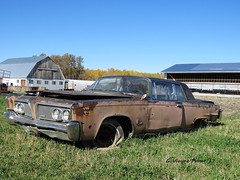 1964 Chrysler Imperial Crown Coupe (Gerald (Wayne) Prout) Tags: 1964chryslerimperialcrowncoupe highway101east blackrivermatheson northernontario northeastern ontario canada derelict prout geraldwayneprout canon canonpowershotsx60hs powershot sx60 hs digital camera photographed photography 1964 chrysler imperial crown coupe highway101 east blackriver matheson northern automobile vehicle car