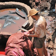 Non è un piacere stare a osservare il lavoro umano quando questo è ancora fatica, maledizione e schiavitù. (Hermann Hesse) (carlini.sonia) Tags: sonia fes marocco africa uomo lavoro fez conceria