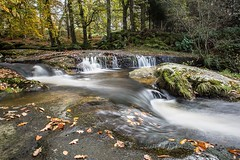 Cloughlea, Co Wicklow - (Explored) (Clem Mason) Tags: canon 5d ireland clemmason wicklow water river ngc autumn 2017 november kilbride cloghleagh