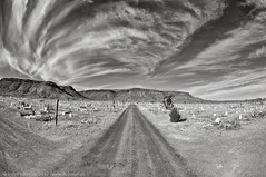 The End of the Road (dejavue.us) Tags: 105mmf28 d90 vanishingpoint nikon monochrome fisheye mojavedesert road goldfield nevada nikkor blackandwhite cemetery clouds