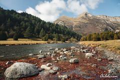 Río Ara en Bujaruelo (Aildrien) Tags: autumn bosque montaña bujaruelo niebla outdoor paseo huesca clouds pirineos torla nubes pyrenees montañas ordesa otoño fog trekking aragón forest mountain