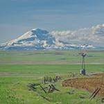 Mt Adams and Windmill 456 B thumbnail