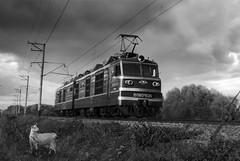 A train is passing by... (fil_yevko) Tags: вл80 vl80 loco ukraine залізниця electric goat