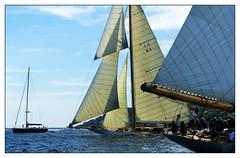 Cambria croise Elena of London (myvalleylil1) Tags: france var méditerranée bateaux voiliers mer sea sailboats sainttropez regatta